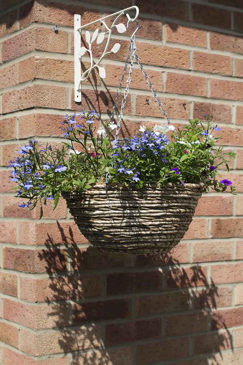 hanging_basket2