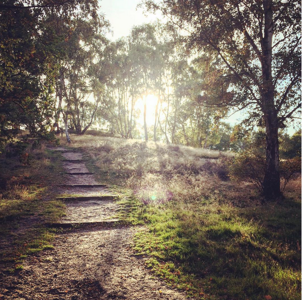 Bedfordshire in Autumn