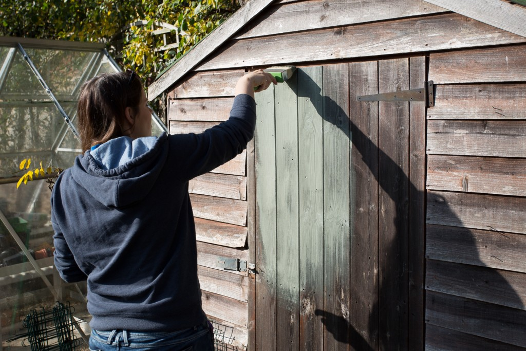 Painting shed willow